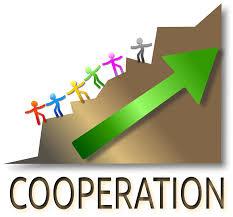 cooperate