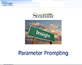INSIGHT Parameter Prompting (Users)